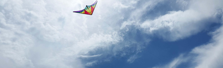 Sport Kites