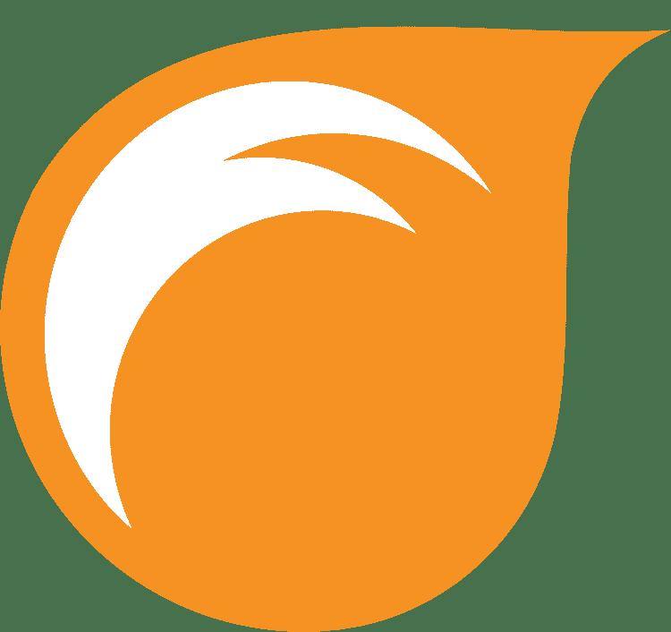 Tricks Book 3x Pro Thud Juggling Balls Juggling Ball Set of 3 LEATHER Bag